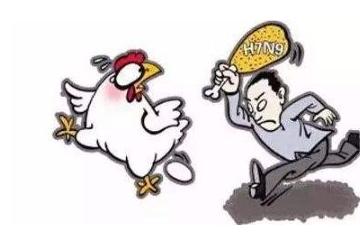 研究发现抗H7N9禽流感新型高活性全人源抗体