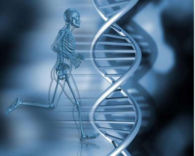 人体组织基因活性大规模破译