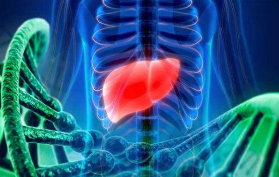 如何健康护肝 中医护肝有何方法