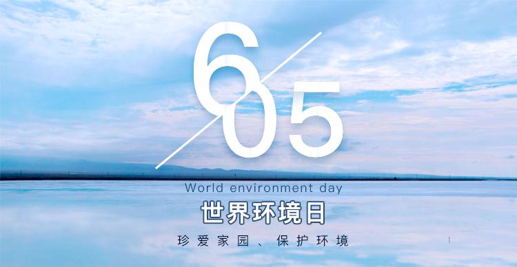世界环境日的来历