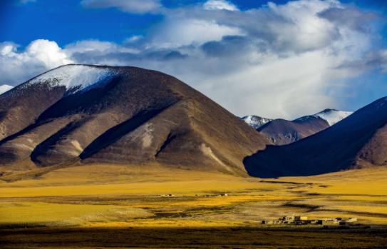 西藏口腔医学会成立 促西藏口腔医学发展_拓诊卫生资讯