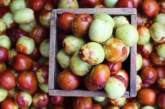 大枣可治病?秋季如何该食用