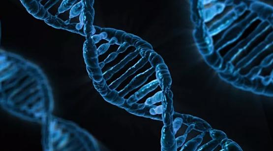 人类的寿命可能正接近其生物极限_拓诊卫生资讯