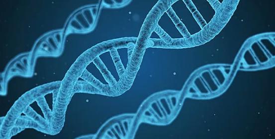 美国FDA批准基因突变试验