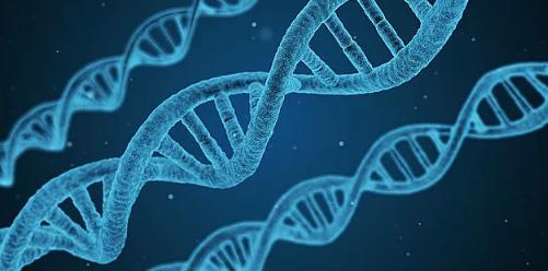 基因編輯讓嬰兒免疫艾滋病:意義不大,代價卻很大_拓診衛生資訊