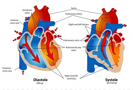 肺水肿患者都有哪些常见类型