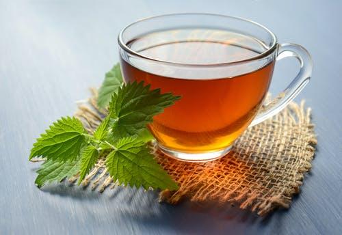 健康减肥杜仲茶