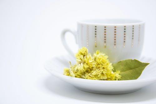 菊花品种多 泡茶怎么选_拓诊卫生资讯