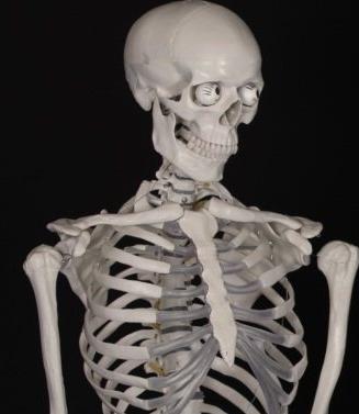 """骨质疏松不能一""""钙""""而论,多发性骨髓瘤也许是背后推手"""