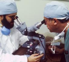 中国将肿瘤电场治疗纳入标准方案 国际前沿创新疗法造福胶质母细胞瘤患者