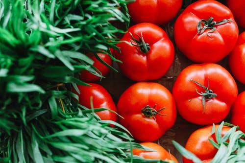 醋泡西红柿可防动脉硬化