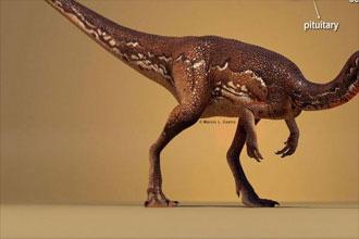 科学家重建恐龙大脑,竟然仅有豌豆粒大小!
