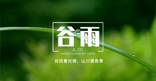 二十四节气之谷雨_拓诊卫生资讯